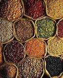 Fotos de Sialkot Rice Syndicate